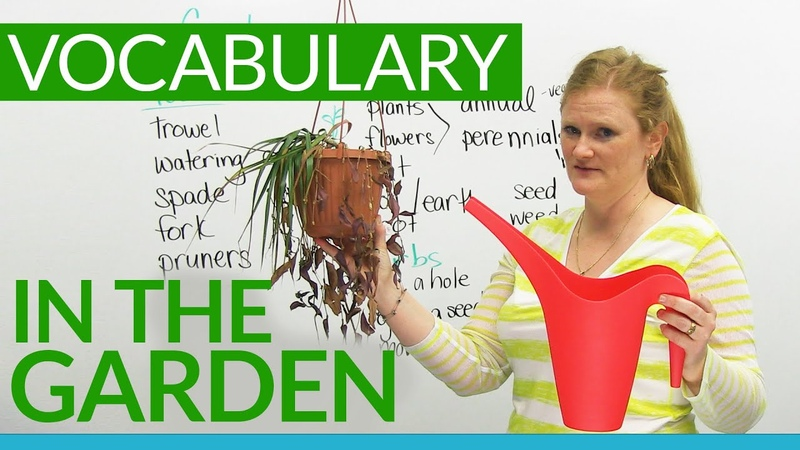English Vocabulary In the GARDEN