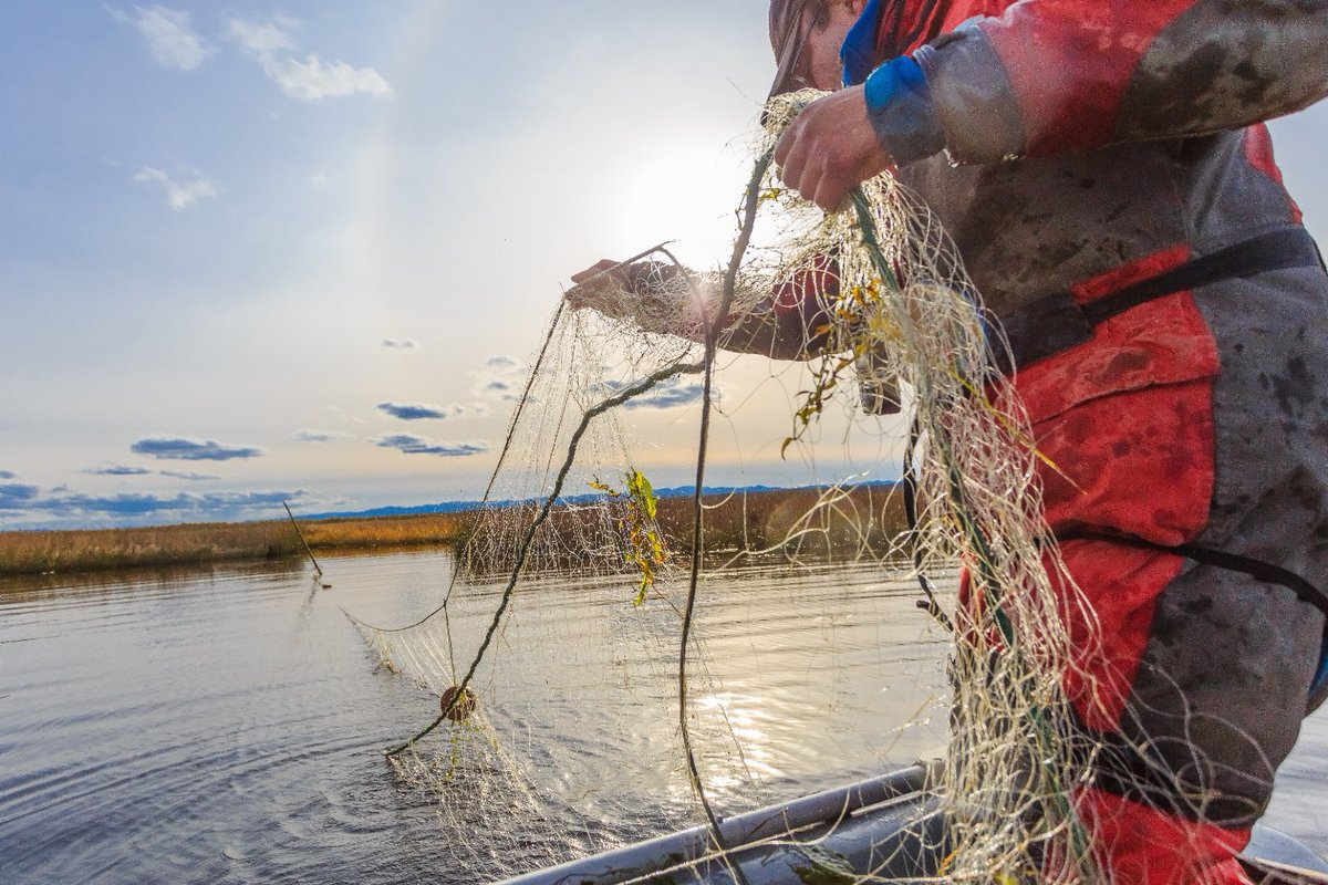 За ловлю рыбы на устюжанина завели уголовное дело и наказали обязательными работами
