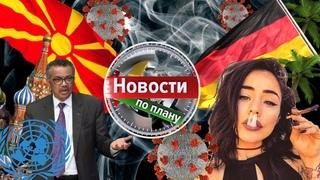 ООН за медицинский каннабис, врачи за легалайз в России, КБД против короны. Новости по плану_3 #217