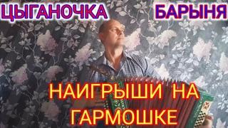 Наигрыши на гармошке, (Цыганочка и Барыня, очень красиво). Играет Александр Мурзин.