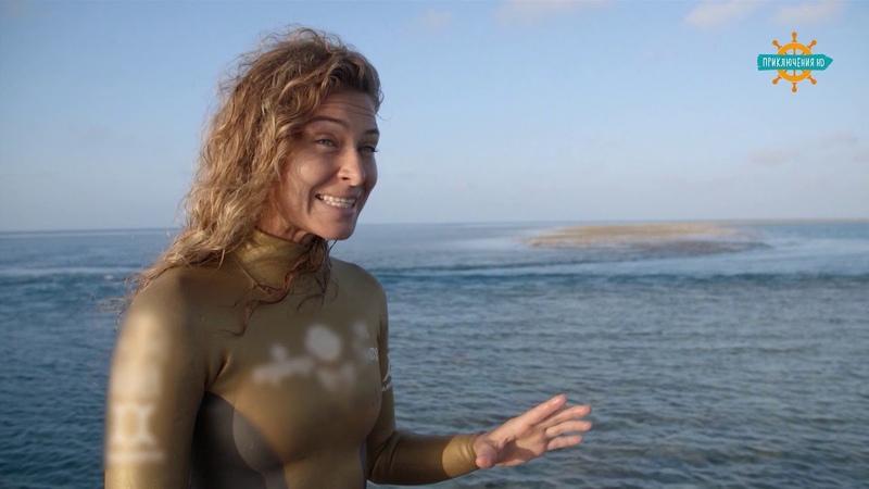 Анонс Фридайвинг на Большом Барьерном рифе