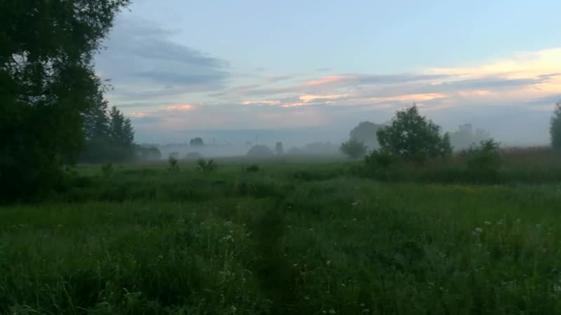 66 Диалоги о Мишане Нерест Карпа 07 06 2020