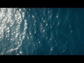 NTO - Petit Matin (Official Video)