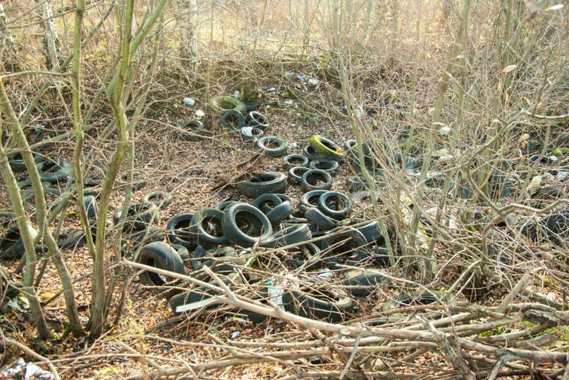 свалка шин вдоль дороги, картографированная в рамках проекта «Охота на колеса»
