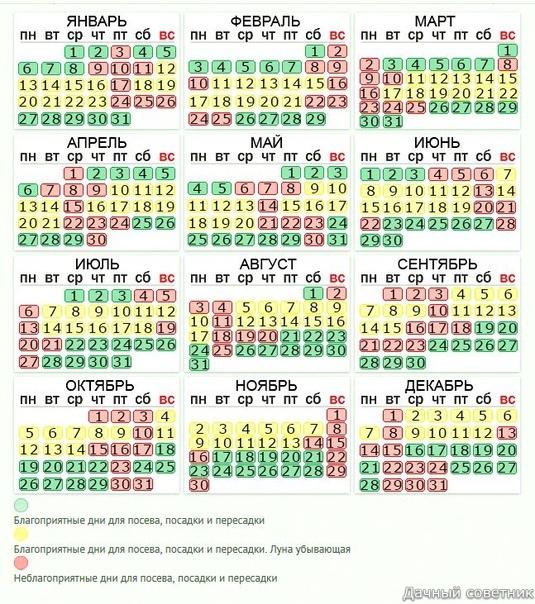Что прабабушка, что бабушка, что мать, все говорят - календарь имеет значение