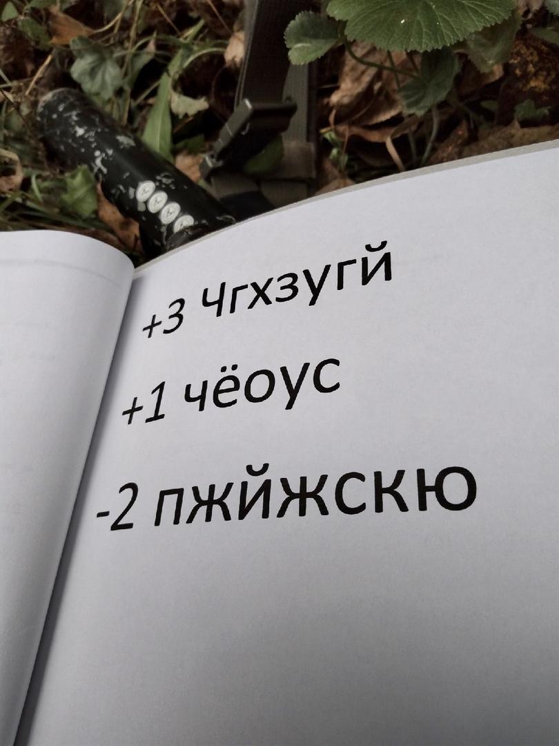 Северная рокада: удачный драйв, изображение №3