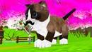 СИМУЛЯТОР Маленького КОТЕНКА 9 Лес. Баги. Усатый кот в новом обновлении в Cat Sim и друзья с Кидом