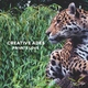 Creative Ades - Private Love
