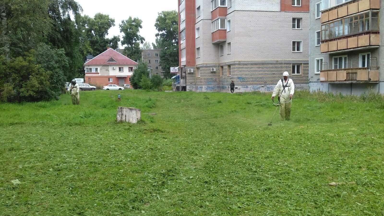 Проспект Строителей, 36. Кошение газонов.