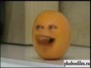 V яблоко фрукты смешно юмор груша апельсин прикол 1