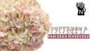 МК Реалистичная тонировка гортензии Hydrangea pastel toning DIY