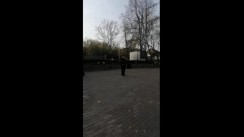 Наш парк проект Александровский сад ваша ЛарИна