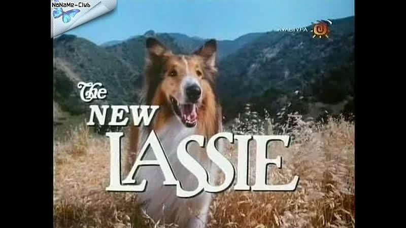 Новые приключения Лесси(1989–1991) серии 13-18