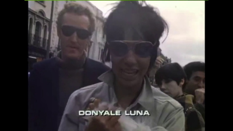 Ramon Goose Why Donyale Luna tribute