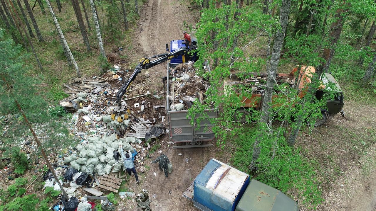 Свыше 50 тонн бытовых отходов собрали на территории Юркинского лесничества