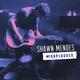 Shawn Mendes - Stitches