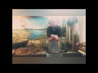 Доска для стирки. Видео-обзор из Кондинского музея.
