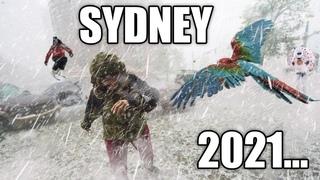 APOCALYPSE in Australia! Crazy golf ball sized hailstorm hit Sydney! Broken glass! Cars are damaged!