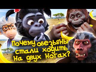 Почему обезьяны стали ходить на двух ногах | Андрей, Маруся и другие обезьяны | 2-я серия