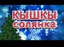 """ТАТАРЧА СОЛЯНКА ¦ """"Кышкы солянка - 2014"""""""
