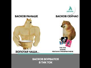 Басков в Тик Токе | АКУЛА