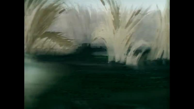 Lucky Ducky_Везучий утёнок (1948) Tex Avery_Текс Эйвери. США