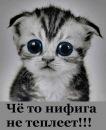 Фотоальбом Людмилы Постниковой