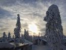 Фотоальбом Александра Меринова