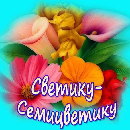 должен открытка светуля красотуля чтобы орхидея быстро