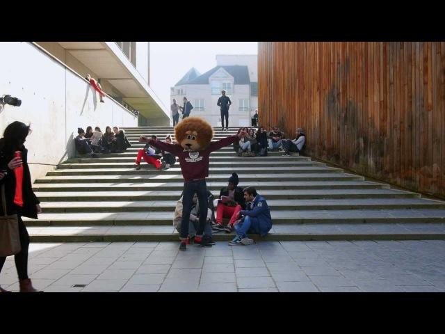 ASFJMS - HARLEM SHAKE - FACULTÉ JEAN MONNET SCEAUX - France