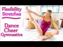 Flexibility Stretches For Dancers, Cheerleaders Gymnastics, Beginners Challenge Exercises Workout