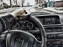 Персональный фотоальбом Андрея Горбунова