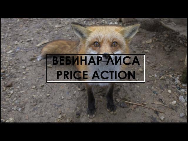 Вебинар 1 знакомстово с Price Action и ответы на вопросы