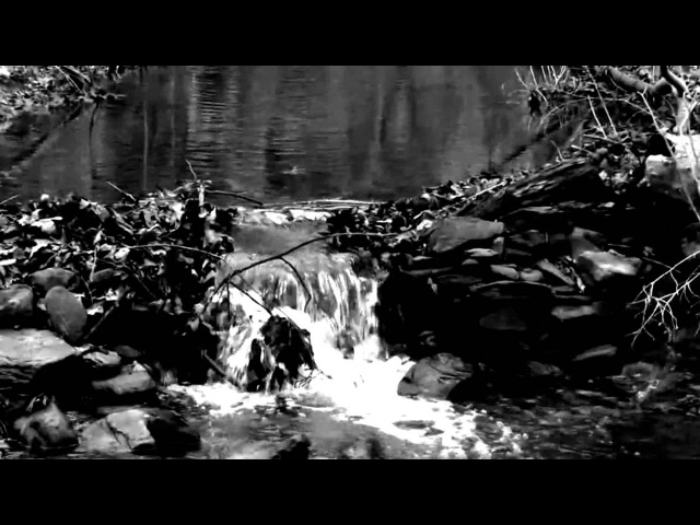 Wedard - Diminished (feat. Midnight Odyssey) - (Official Videoclip)Depressive Black Metal(Germany)