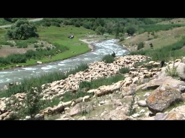 Koshu 2011 video - airvideo