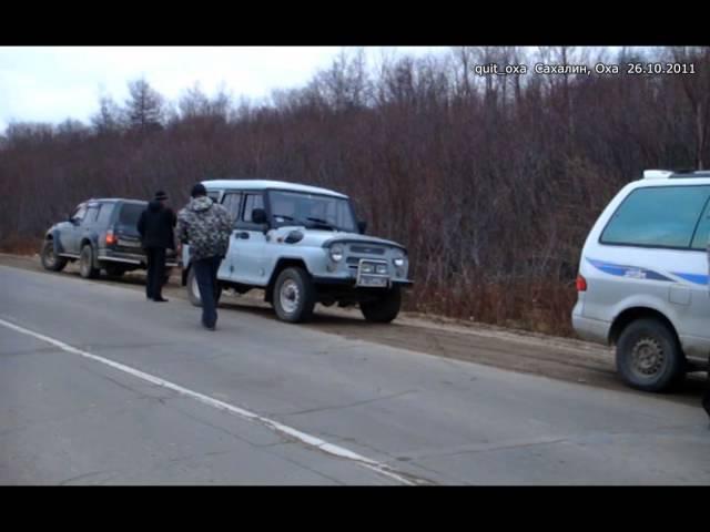 Три медведя Медведи попрошайки Сахалин Оха 2011 bears