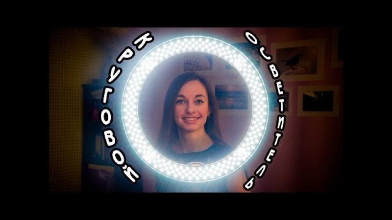 Осветитель Impulsar Ring LEDR 240 светодиодный кольцевой Обзор