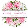 Present laboratory Цветы Букеты в коробке Москва