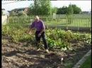 АГРОИНФОРМ Начинающие фермеры посевная и супер огород телеканал Россия 24 28 08 2013г