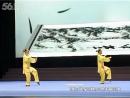 2014年全国武术套路锦标赛太极拳赛 女子双人杨式太极拳第一名( Стиль ЯН)