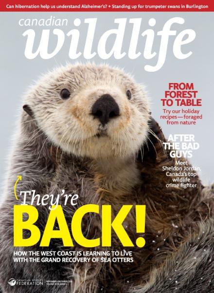Canadian Wildlife - NovemberDecember 2016