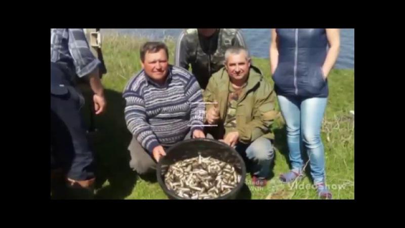 Зариблення ставків села Кетрисанівки