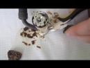 Спиртовая горелка из гильзы (Спиртовка) своими руками [Обзор] Mini-stove from sl
