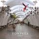Pompeya - Untitled