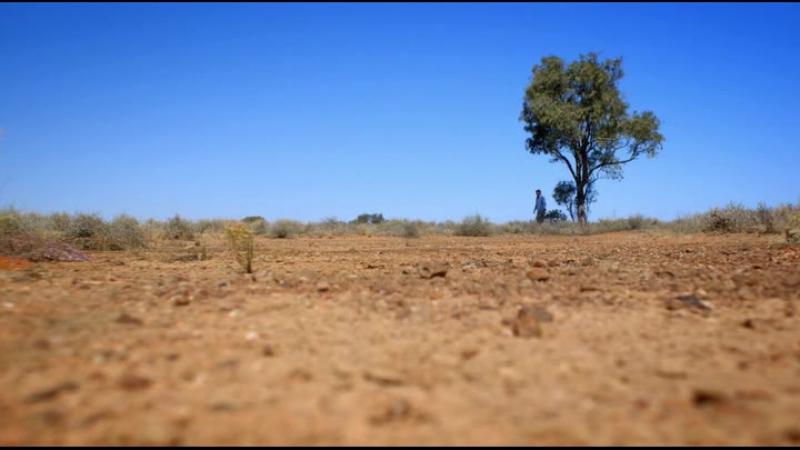 Становление континентов 2013 австралия