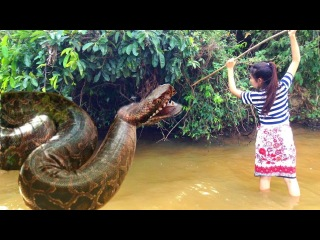 Wow Brave Girl Catch Snake Using Simple Trap - Incredible Girl Catch Snake - How to catch snake 18