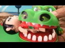 Crocodile Toys learn color family toys Play set Toys for Kids