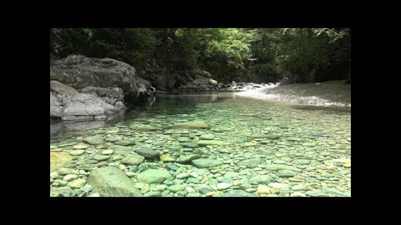 癒し 自然音 せせらぎ 阿寺渓谷を流れる水の音