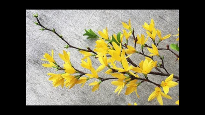 ABC TV How To Make Forsythia Paper Flower From Crepe Paper Craft Tutorial