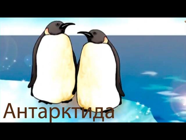 Развивающие мультфильмы Совы география для детей мультфильм 9